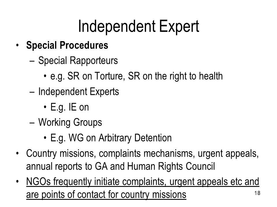 Independent Expert Special Procedures Special Rapporteurs