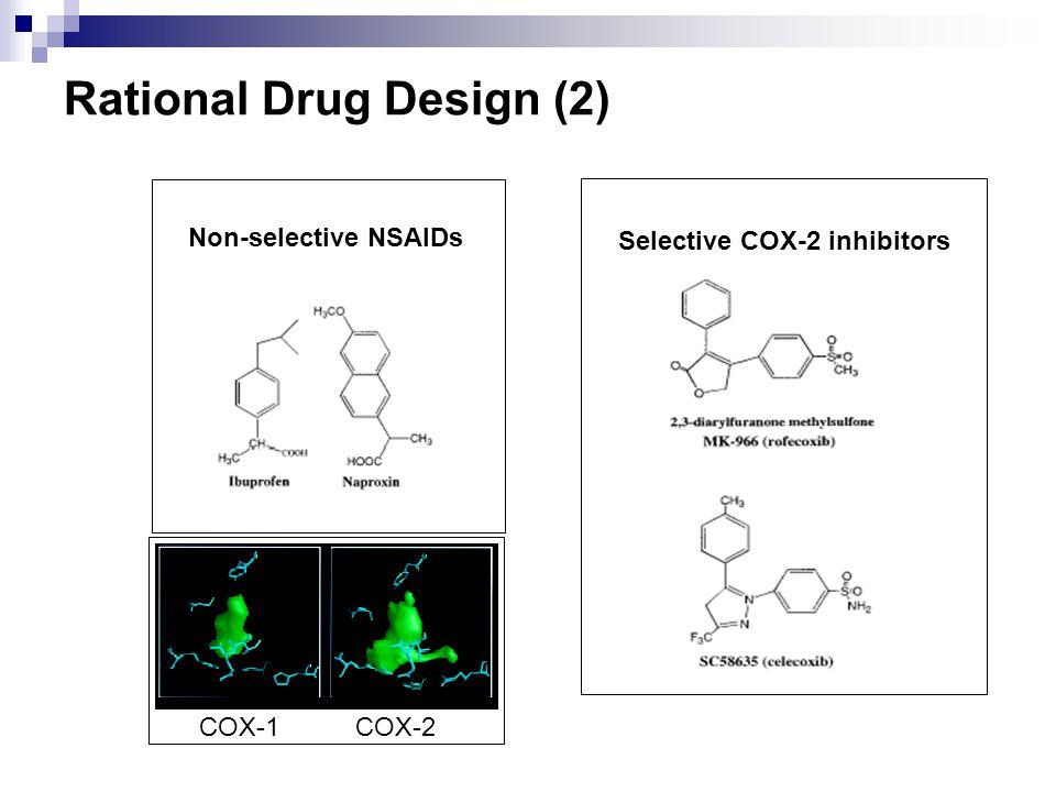 Rational Drug Design (2)