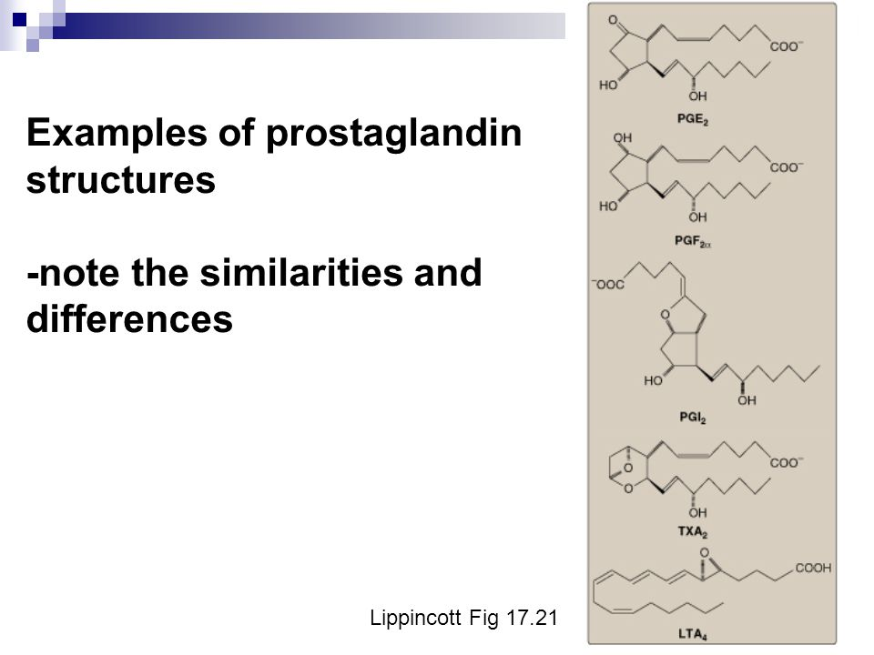 Examples of prostaglandin structures -note the similarities and