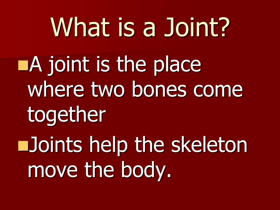 What is a Joint A joint is the place where two bones come together