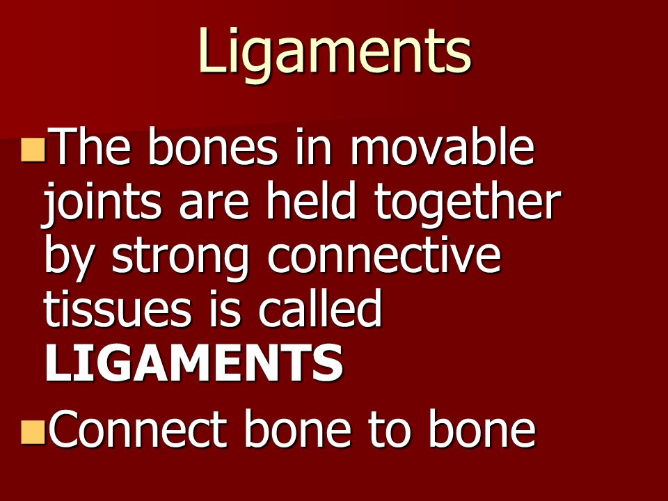 Ligaments The bones in movable joints are held together by strong connective tissues is called LIGAMENTS.
