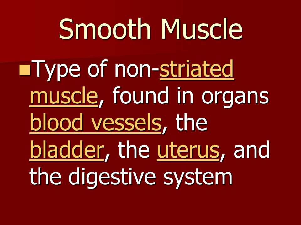 Smooth Muscle Type of non-striated muscle, found in organs blood vessels, the bladder, the uterus, and the digestive system.