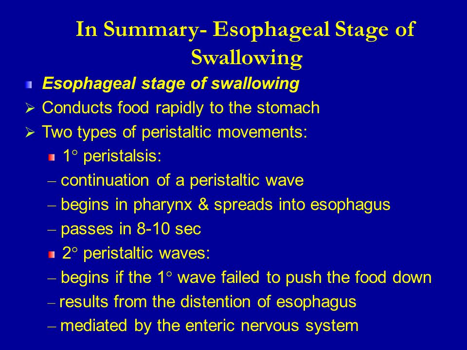 In Summary- Esophageal Stage of Swallowing