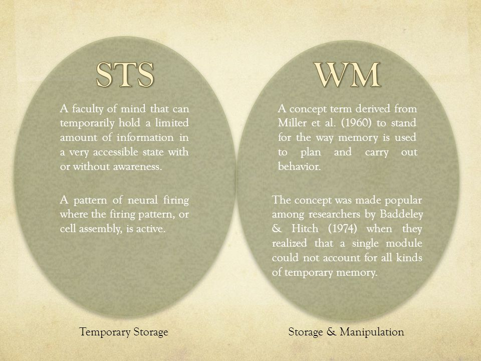 STS WM. A faculty of mind that can temporarily hold a limited amount of information in a very accessible state with or without awareness.