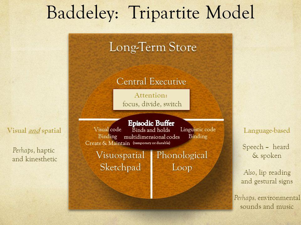 Baddeley: Tripartite Model