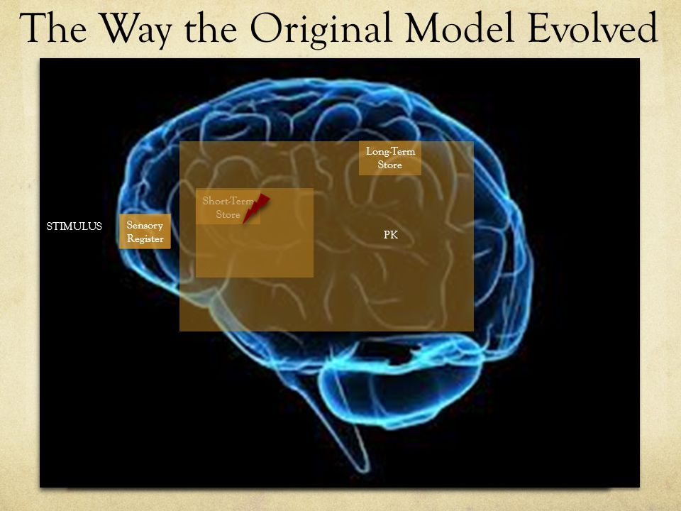 The Way the Original Model Evolved