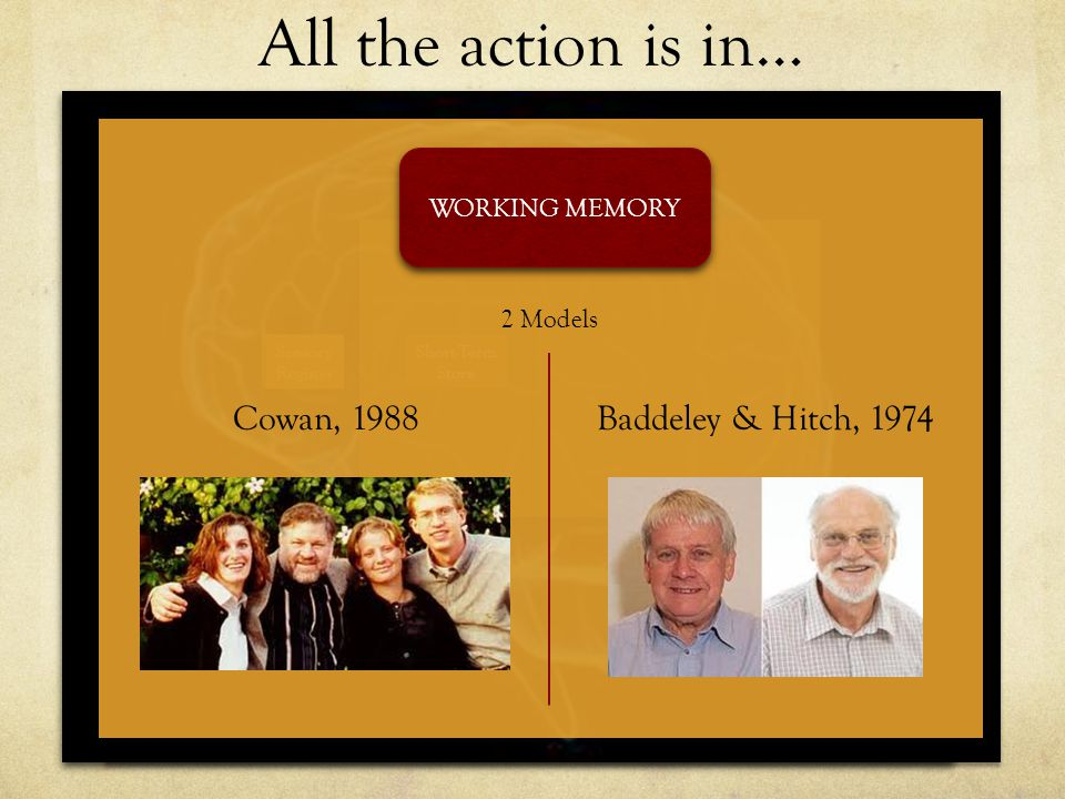 All the action is in… Cowan, 1988 Baddeley & Hitch, 1974