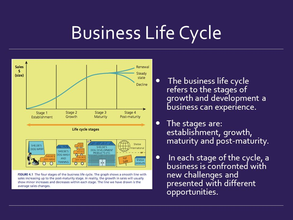 Business Growth & Decline - ppt download