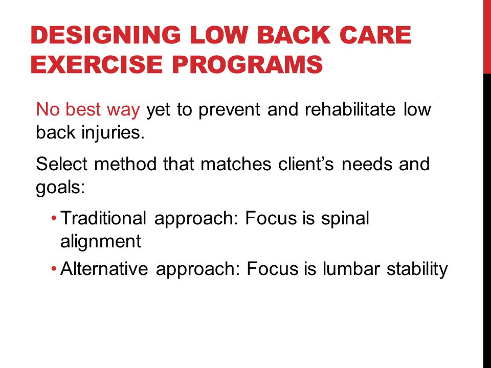 Designing Low Back Care Exercise Programs