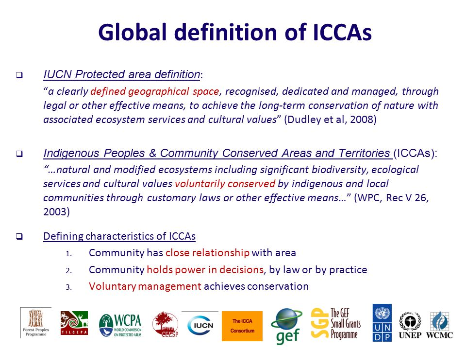 Global definition of ICCAs