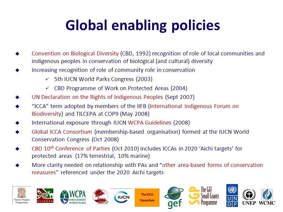 Global enabling policies
