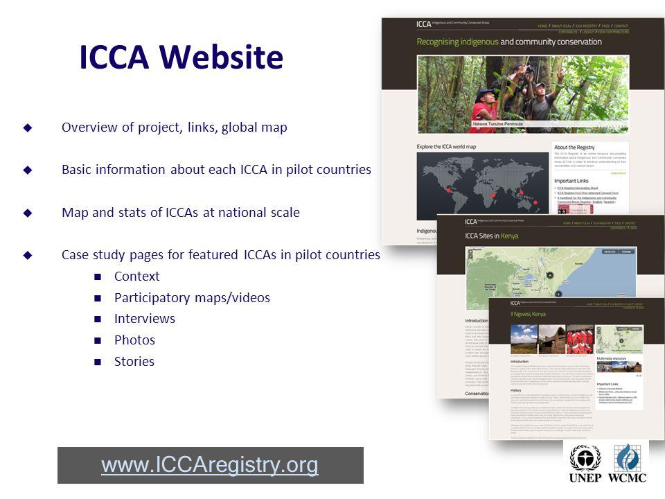 ICCA Website www.ICCAregistry.org