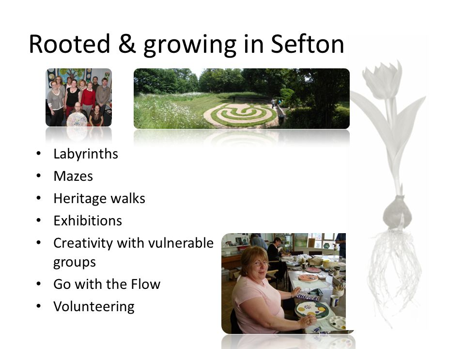 Rooted & growing in Sefton