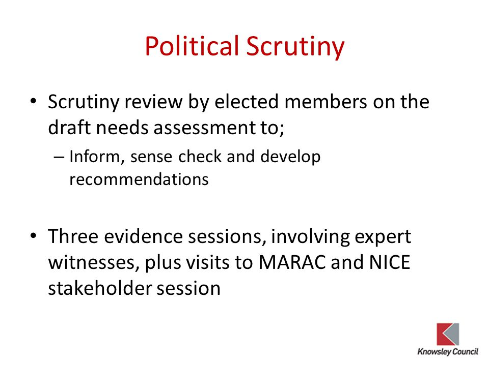 Political Scrutiny Scrutiny review by elected members on the draft needs assessment to; Inform, sense check and develop recommendations.