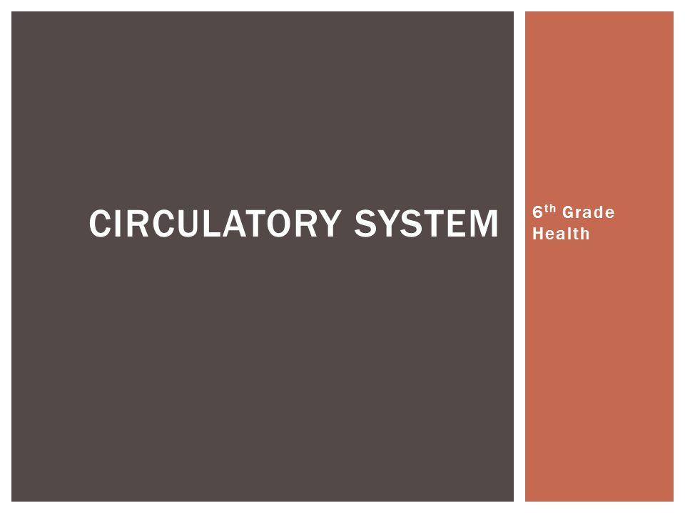Circulatory system 6th Grade Health