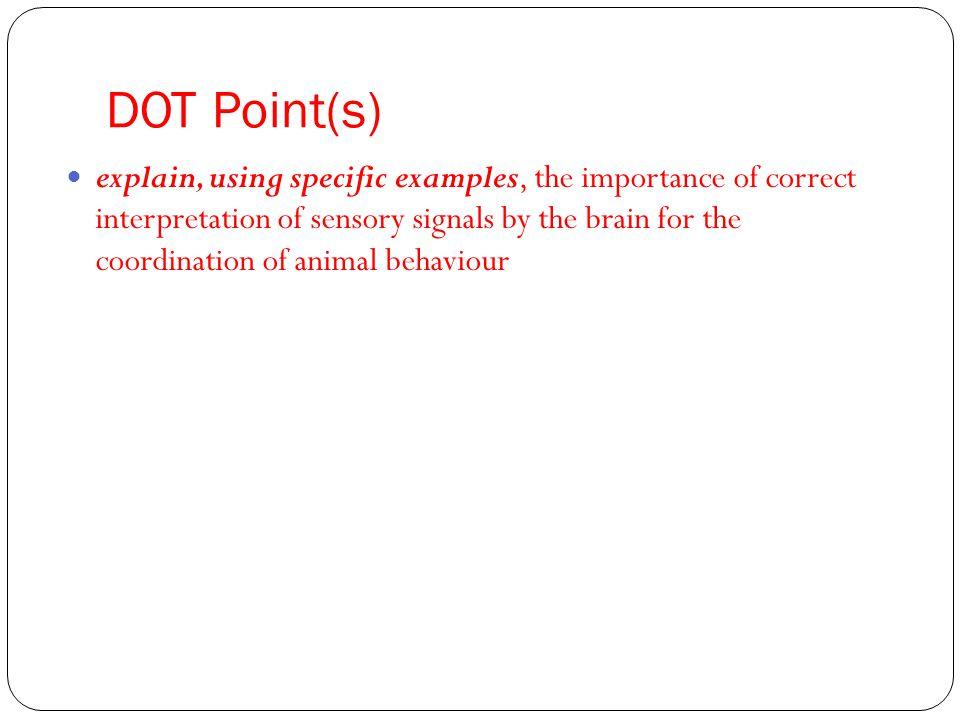 DOT Point(s)