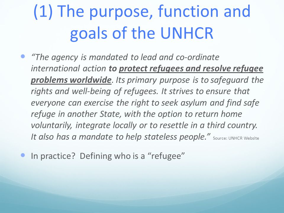 (1) The purpose, function and goals of the UNHCR