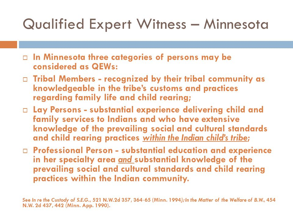 Qualified Expert Witness – Minnesota