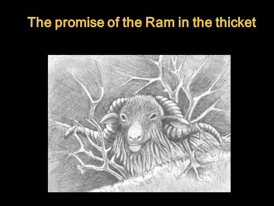 The promise of the Ram in the thicket