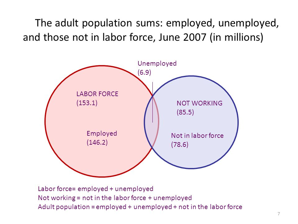The adult population sums: employed, unemployed, and those not in labor force, June 2007 (in millions)