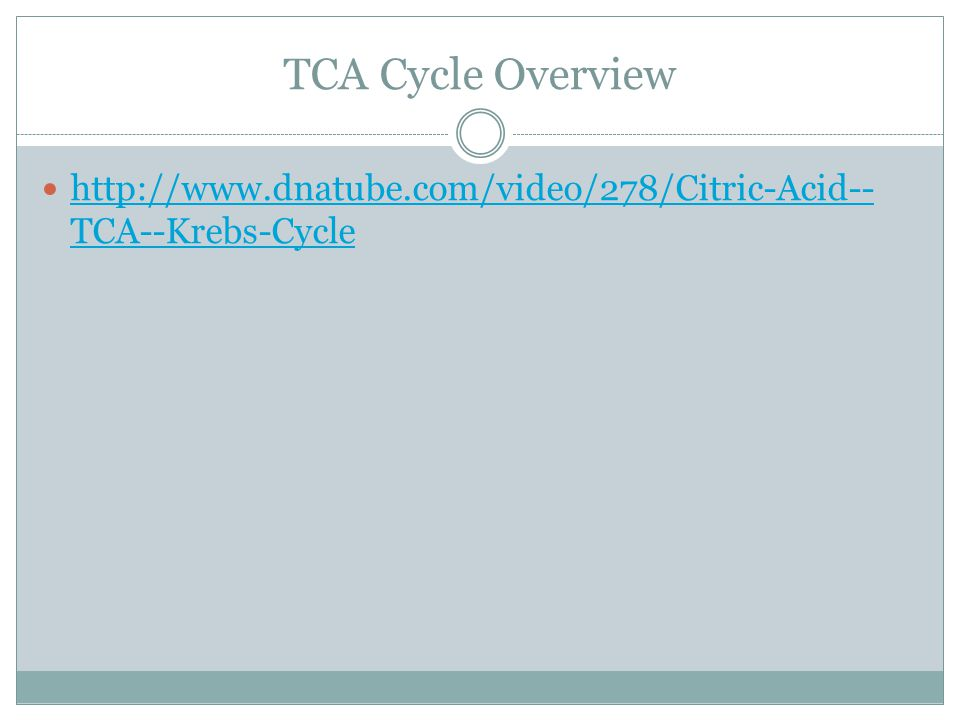 TCA Cycle Overview http://www.dnatube.com/video/278/Citric-Acid--TCA--Krebs-Cycle