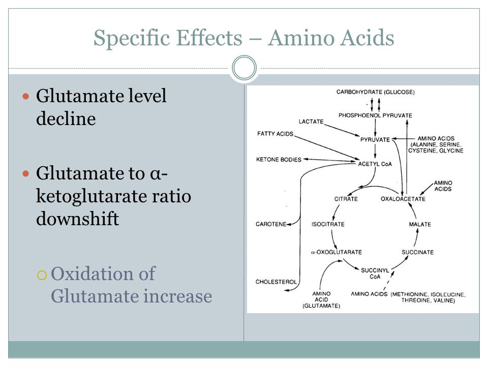 Specific Effects – Amino Acids