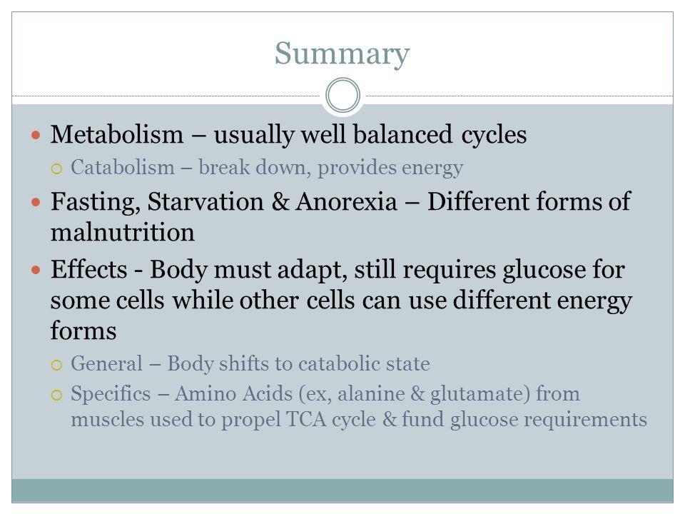 Summary Metabolism – usually well balanced cycles