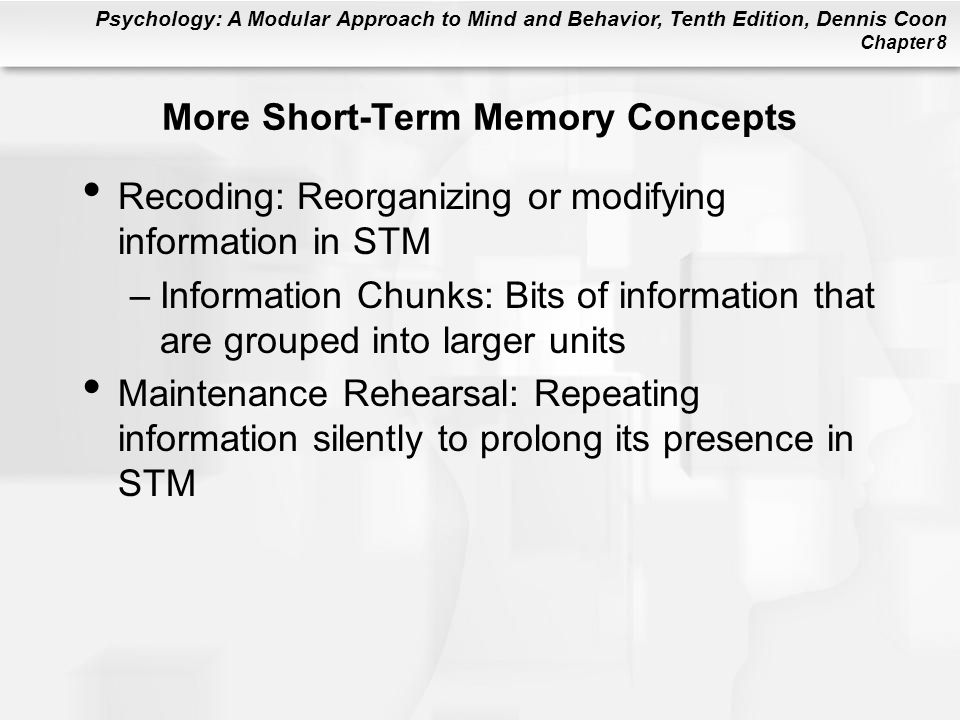 More Short-Term Memory Concepts