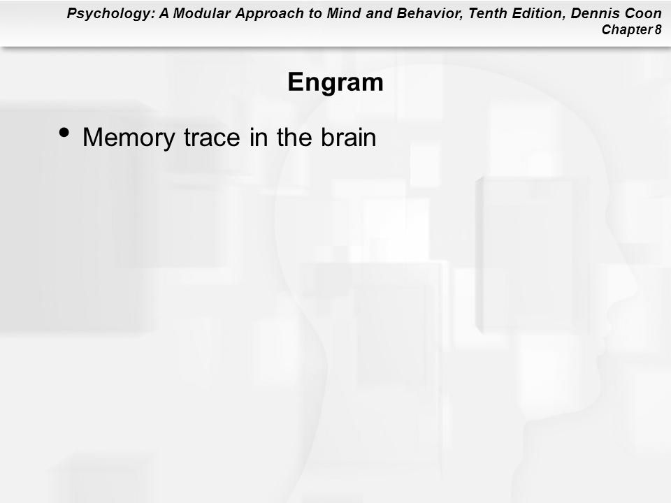 Engram Memory trace in the brain