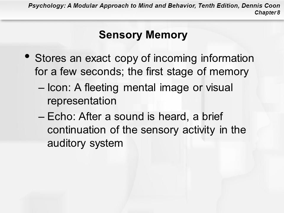 Sensory Memory Stores an exact copy of incoming information for a few seconds; the first stage of memory.