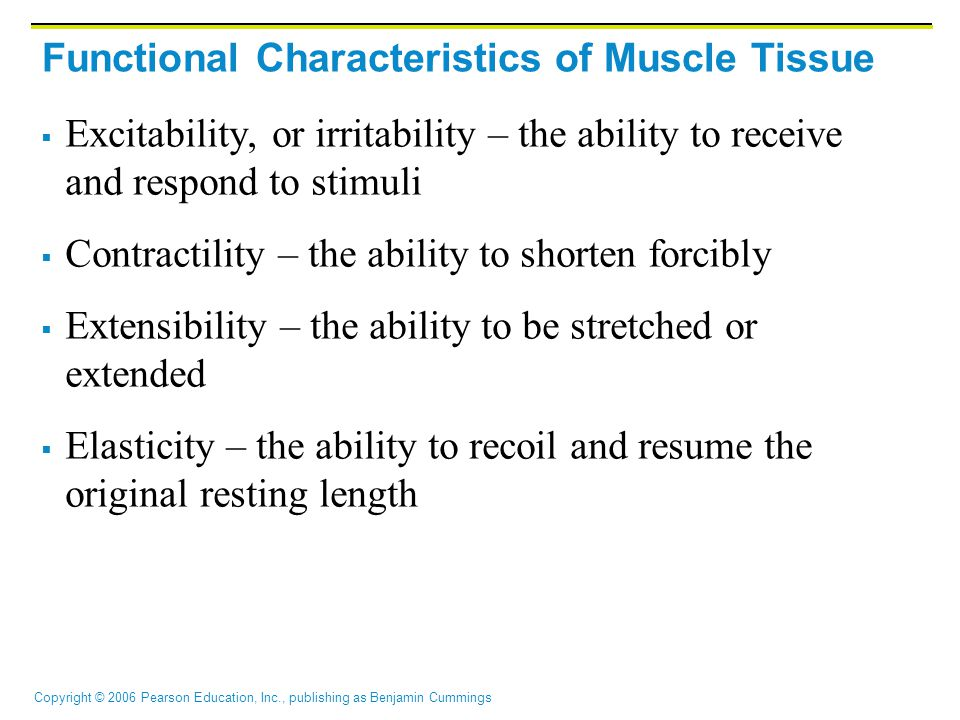 Functional Characteristics of Muscle Tissue