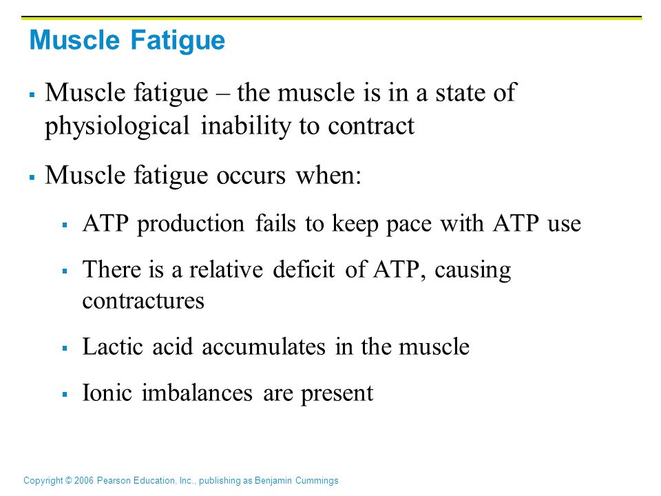 Muscle fatigue occurs when: