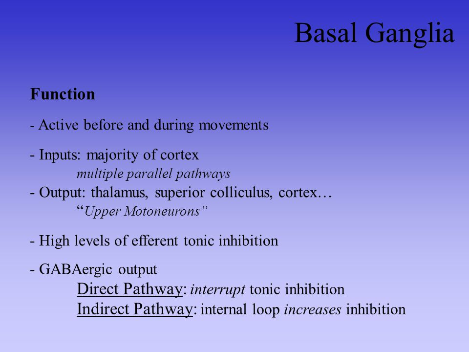 Basal Ganglia Function Direct Pathway: interrupt tonic inhibition