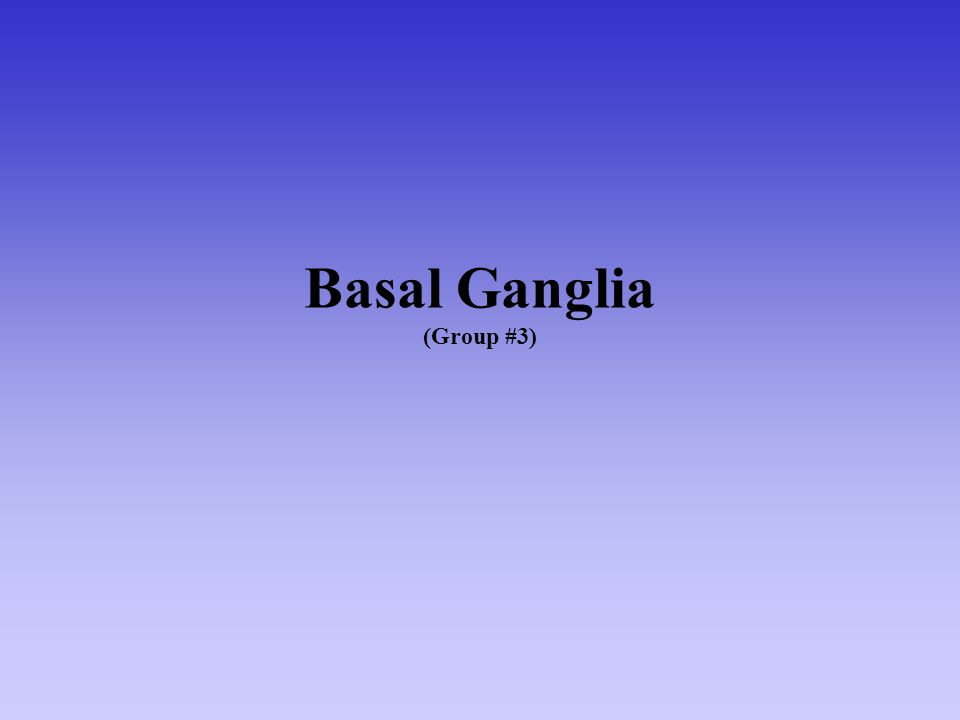 Basal Ganglia (Group #3)