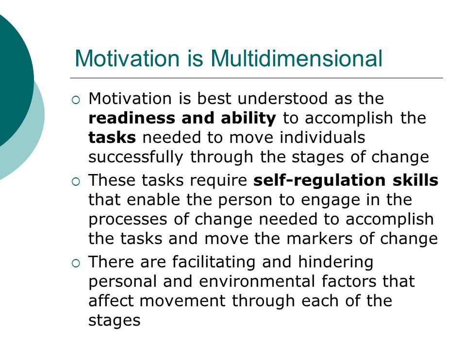 Motivation is Multidimensional