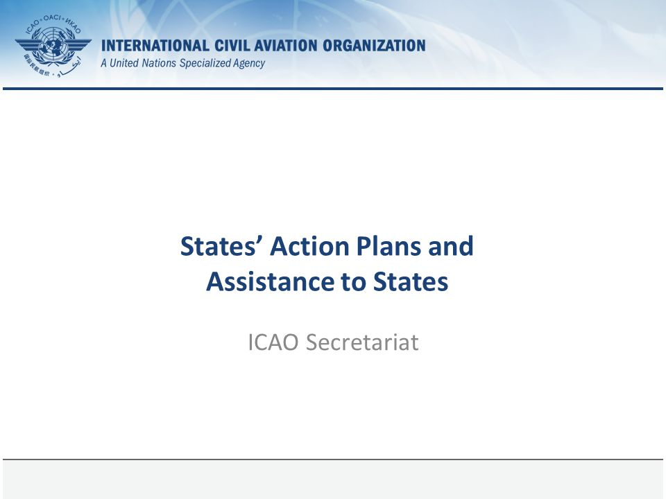 States' Action Plans and Assistance to States