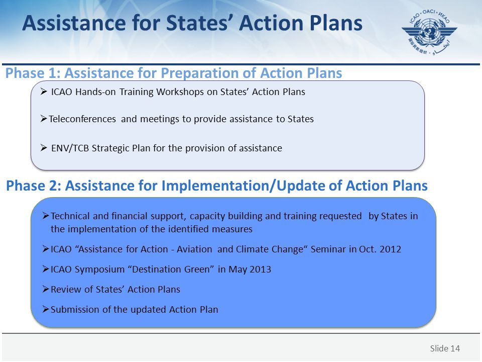Assistance for States' Action Plans
