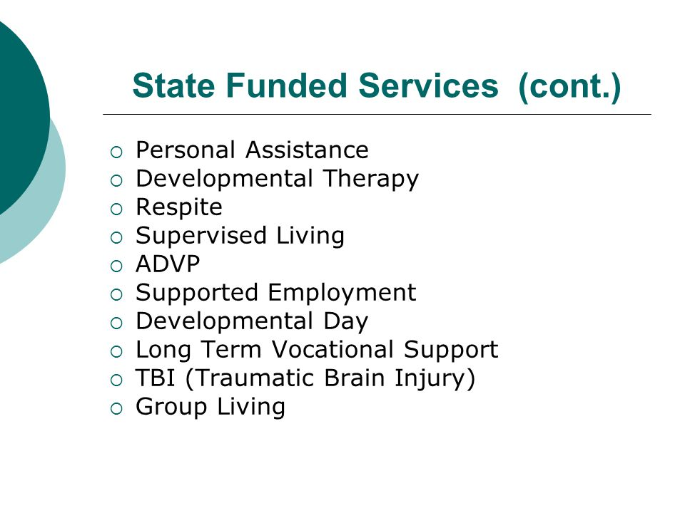 State Funded Services (cont.)