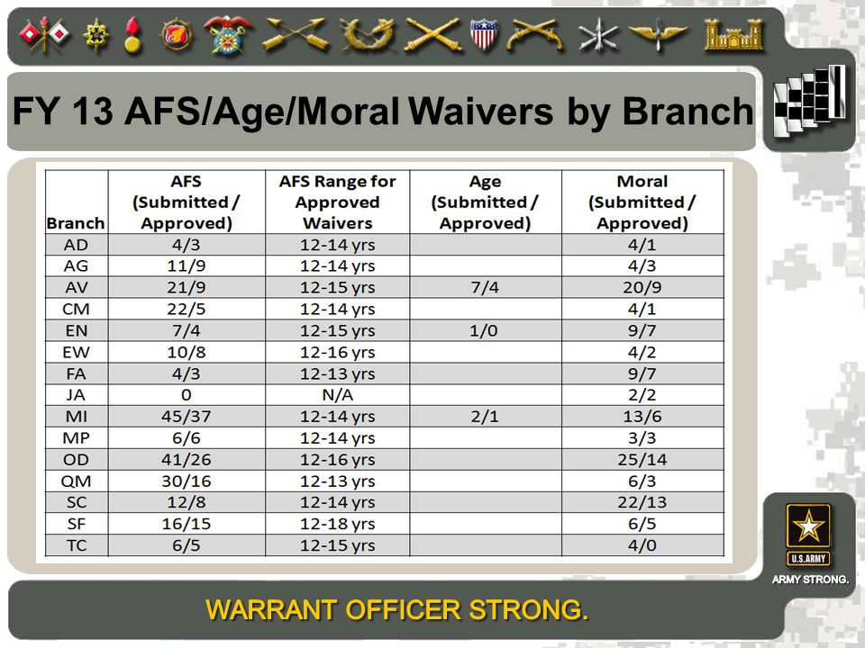 FY 13 AFS/Age/Moral Waivers by Branch