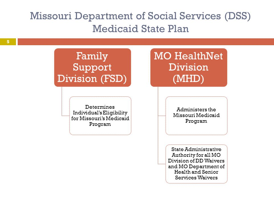 Missouri Department of Social Services (DSS) Medicaid State Plan