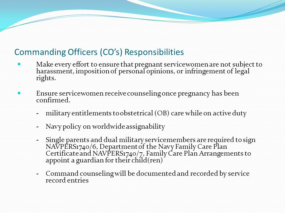 Commanding Officers (CO's) Responsibilities