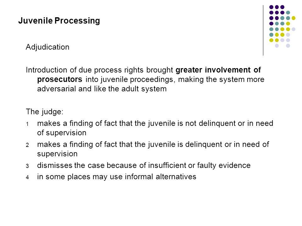 Juvenile Processing Adjudication