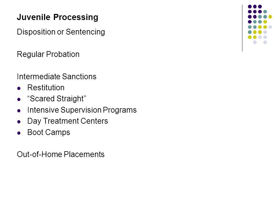 Juvenile Processing Disposition or Sentencing Regular Probation