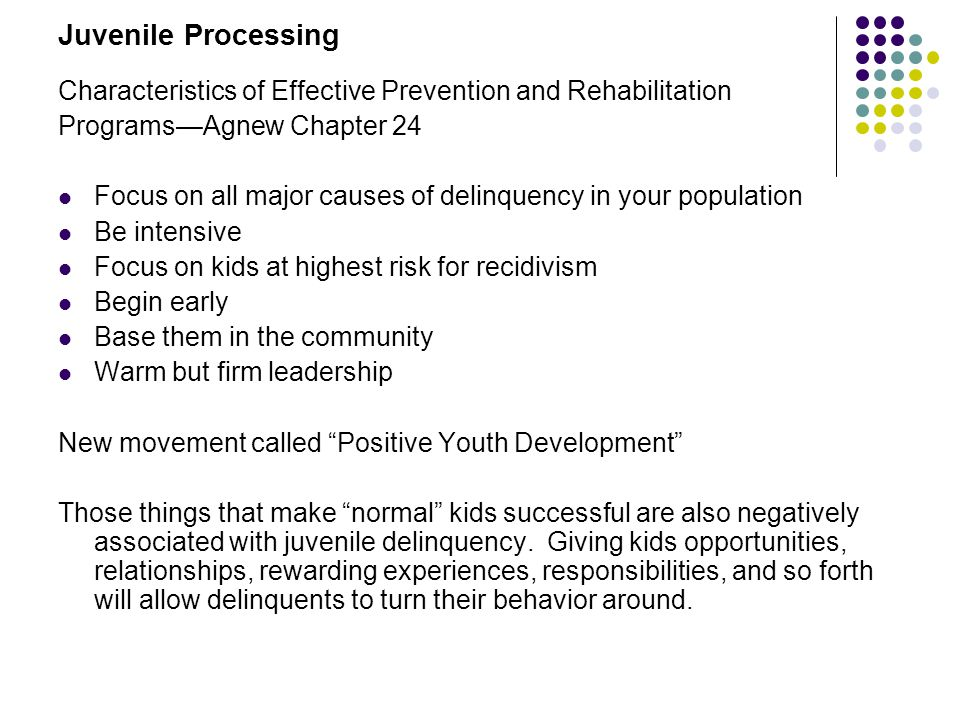 Juvenile Processing Characteristics of Effective Prevention and Rehabilitation. Programs—Agnew Chapter 24.