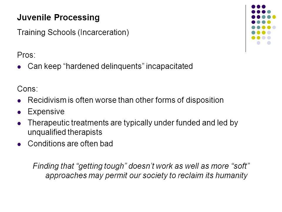 Juvenile Processing Training Schools (Incarceration) Pros: