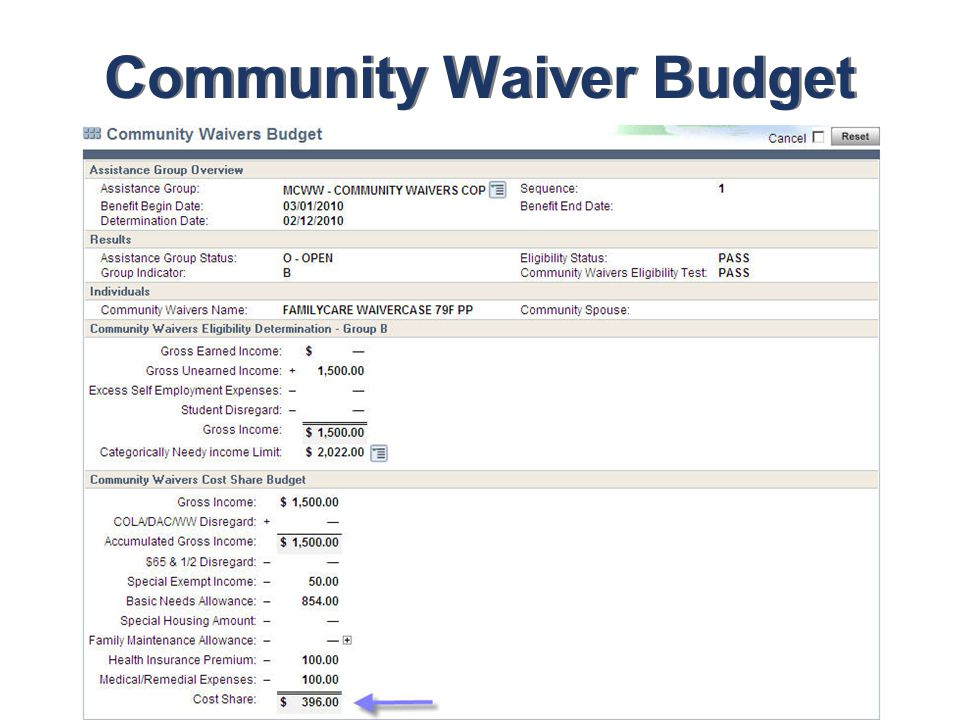 Community Waiver Budget