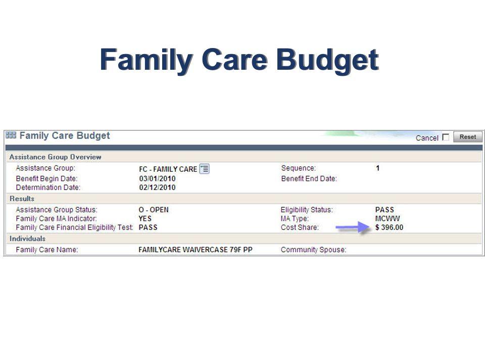 Family Care Budget