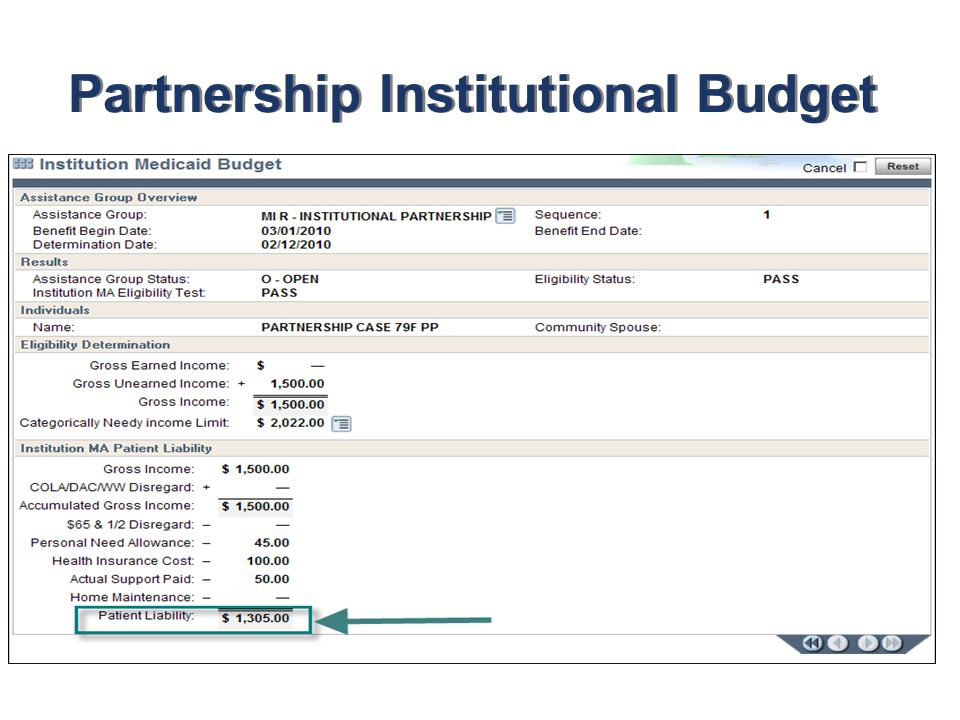 Partnership Institutional Budget