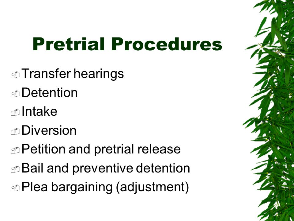 Pretrial Procedures Transfer hearings Detention Intake Diversion