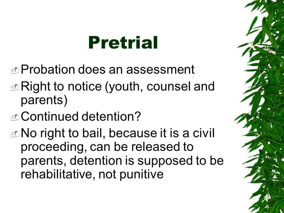 Pretrial Probation does an assessment